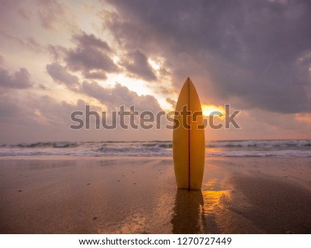surfboard on the beach in sea shore at sunset time with beautiful light. water sport background #1270727449