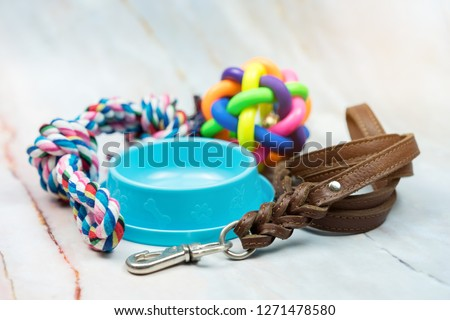 Pet supplies concept.  Pet leather leashes, brush and rubber toy. #1271478580