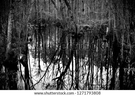 North Carolina farm life #1271793808