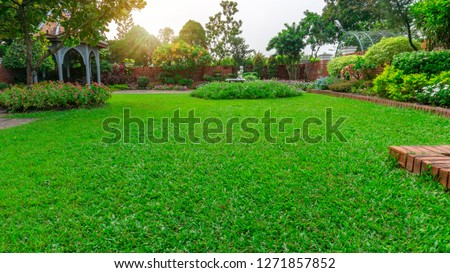Beautiful English cottage garden, colorful flowering plant on smooth green grass lawn and group of evergreen trees in good care maintenance landscaping of a public park under sky and sunshine morning #1271857852