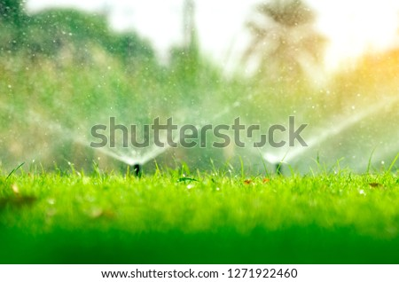 Automatic lawn sprinkler watering green grass. Sprinkler with automatic system. Garden irrigation system watering lawn. Water saving or water conservation from sprinkler system with adjustable head. #1271922460