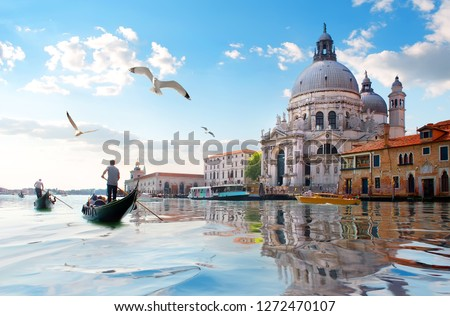 Seagulls and old cathedral of Santa Maria della Salute in Venice, Italy #1272470107