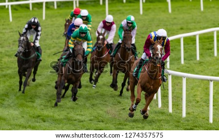 Race horses and jockeys  taking the final turn on the race track #1274357575
