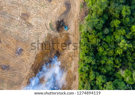 Aerial view of deforestation.  Rainforest being removed to make way for palm oil and rubber plantations #1274894119