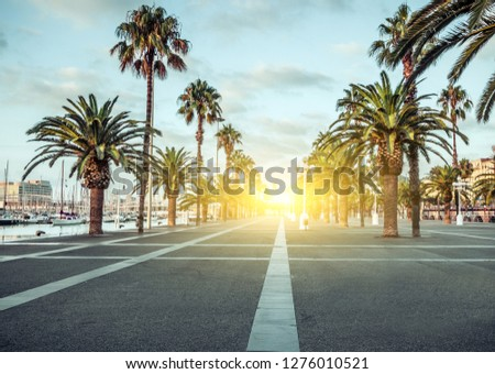 Spring sunrise Port Vell promenade locations with palm trees streets of Barcelona Spain. Royalty-Free Stock Photo #1276010521