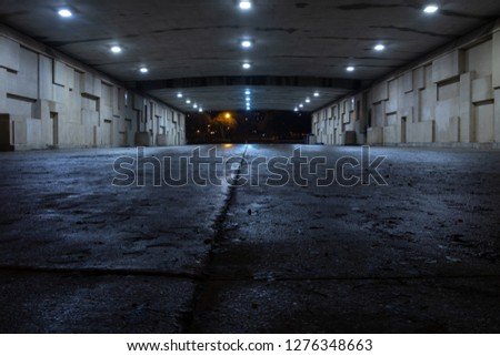 Dark spooky underpass at night, low angle #1276348663