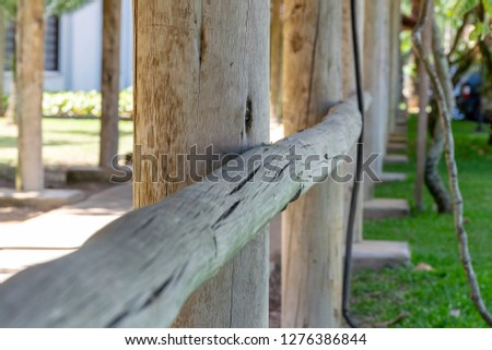 trunks and wooden fence #1276386844