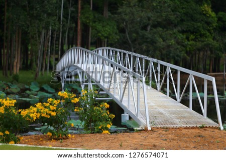 Bridge over the water across the pond to the shady garden. Bridges in the Garden. Water Garden Landscaping Ideas. Bridges for garden.