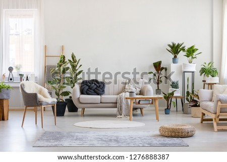 Urban jungle in bright living room interior with white couch with knot pillow and wooden furniture, copy space on empty wall #1276888387