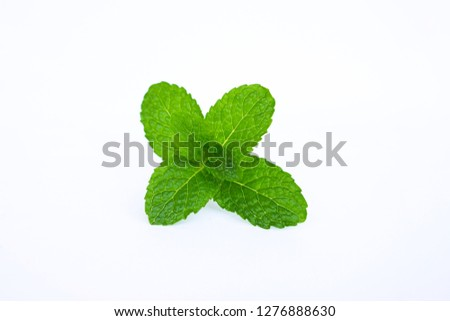 Close up green mint leaf on white background. #1276888630