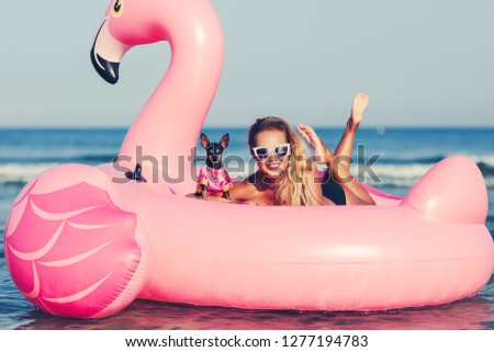 Summer lifestyle portrait of pretty smiling girl swimming on air mattress in the ocean with small cute dog, wearing black bikini and mirrored sunglasses. Smiling and having  fun. Travelling with dog #1277194783