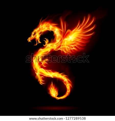 Illustration of Fire Dragon with Wings Symbol of Wisdom and Power on Black Background