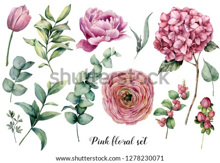 Hand painted floral set. Watercolor botanical illustration with ranunculus, tulip, peony, hydrangea flowers, berries and eucalyptus leaves isolated on white background.  Nature objects for design.