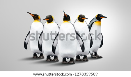 Five Emperor Penguins Isolated On Gray Background. Penguins Are In A Row