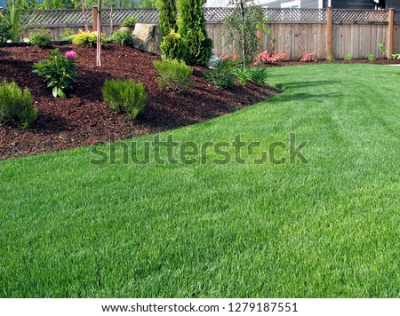 Pure stand of freshly mowed green lawn grass in landscaped garden surrounded by planted areas with shrubs and trees background  #1279187551