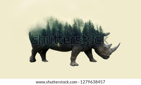 Digital Art Photo Manipulation, double exposure Royalty-Free Stock Photo #1279638457