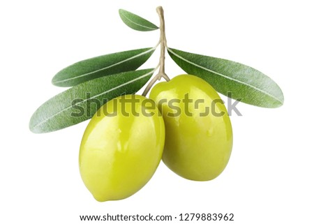 Olive branch with two green olives, isolated on white background #1279883962