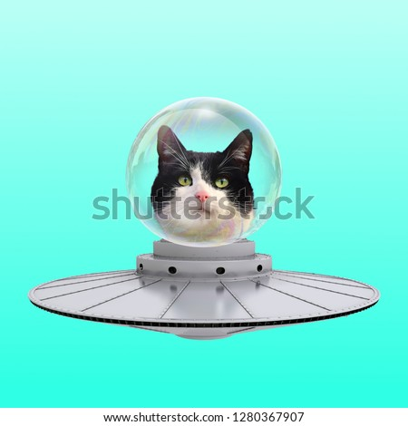 Funny art collage. Concept Cat Ufo on blue background.