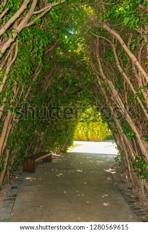 Hall surrounded by trees #1280569615