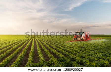 Tractor spraying pesticides at  soy bean fields #1280920027