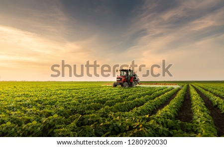 Tractor spraying pesticides at  soy bean fields #1280920030