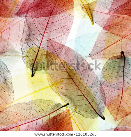 Seamless  leaves background
