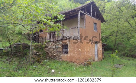Old and forgotten house in the forest #1281882379
