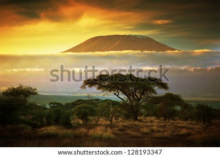 Mount Kilimanjaro and clouds line at sunset, view from savanna landscape in Amboseli, Kenya, Africa Royalty-Free Stock Photo #128193347