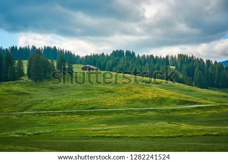Landscape photo from Swiss Alps with clouds, meadow and green nature. Taken in June in summer near Lombachalp, Switzerland. #1282241524