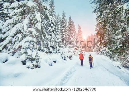 Tourist with backpack hiking on snowy trail #1282546990