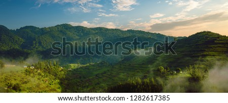 Landscape in southwestern Uganda, at the Bwindi Impenetrable Forest National Park, at the borders of Uganda, Congo and Rwanda. The Bwindi National Park is the home of the mountain gorillas. #1282617385