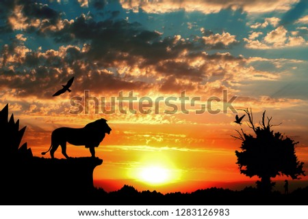 Jungle with mountains, old tree, birds lion and meerkat on golden red cloudy sunset background