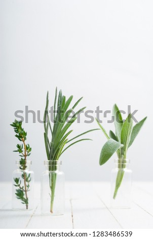 lavender, thyme and sage fresh herbal leaves in mini glass bottles, white wood table background #1283486539