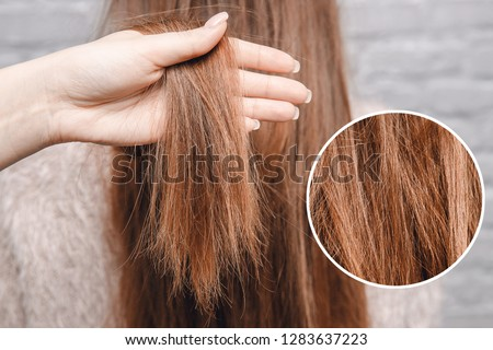 Texture of damaged female hair close-up on gray background. concept loss color and protein. #1283637223