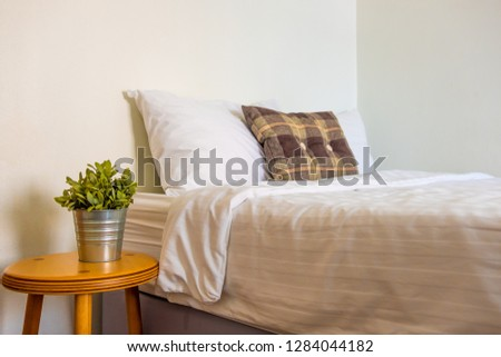 Small tree succulents on the pot tray in the bedroom. Small tree in pot designer on table near bed with floral overlay in inspiring bedroom with handmade swing. #1284044182