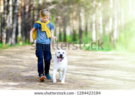 Boy running with a golden retriever in summer park. Child walking with a dog on a leash #1284423184