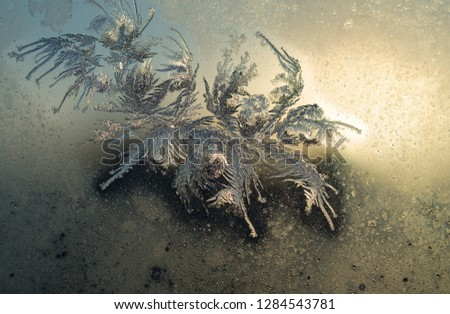 Frost patterns on window glass in winter #1284543781