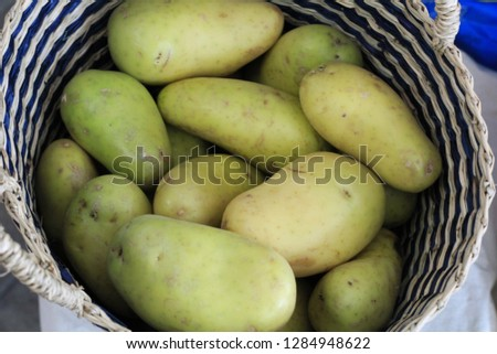 Potato potatoes  fresh Potato fresh potatoes   Potatoes  Potato Recipes  Potato Nutrition  Types of Potatoes #1284948622
