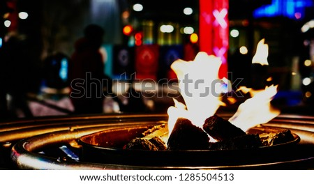 Bonfire on a winter night #1285504513