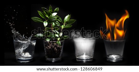 Elements of the nature in glasses - Natural concept Royalty-Free Stock Photo #128606849