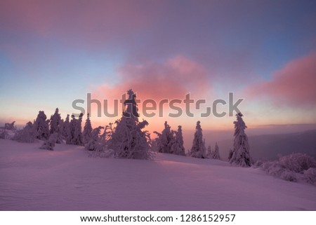 Scenic image of Winter Landscape during sunset. Frosty morning with Colorful sky, calm wintry scene. Ski resort. Impressive picture of wild area. Amazing wintry background. Fantastic Christmas Scene. #1286152957