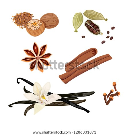 Set vector icons spices. Cardamom, star anise, nutmeg, vanilla flower and sticks, cloves, cinnamon. Vector Illustration. #1286331871