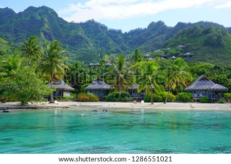 MOOREA, FRENCH POLYNESIA -30 NOV 2018- View of the Intercontinental Moorea Lagoon Resort and Spa Moorea, a luxury hotel with overwater bungalows on the lagoon in  Moorea, French Polynesia.  #1286551021