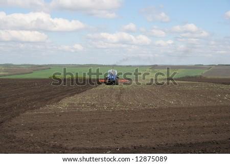 green field #12875089