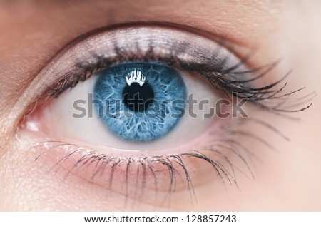 Macro image of human eye Royalty-Free Stock Photo #128857243