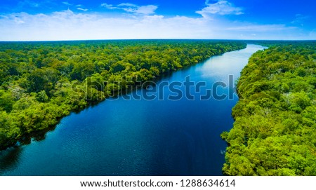 Amazon river in Brazil  #1288634614