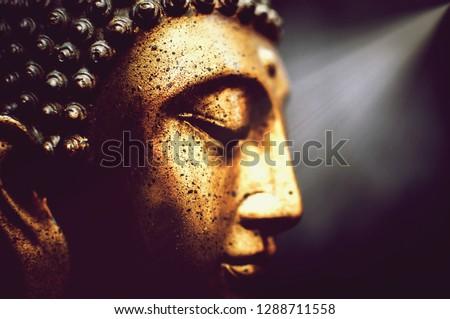 buddha zen decoration #1288711558