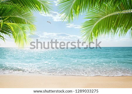 View of nice tropical beach with some palms #1289033275
