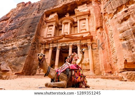 Spectacular view of two beautiful camels in front of Al Khazneh (The Treasury) at Petra. Petra is a historical and archaeological city in southern Jordan.  #1289351245