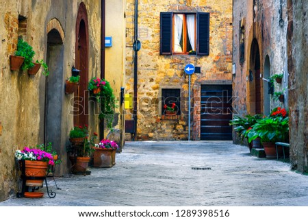 Amazing travel destination in Tuscany, rustic traditional decorated street with colorful flowers and rural stone houses, Pienza, Tuscany, Italy, Europe #1289398516